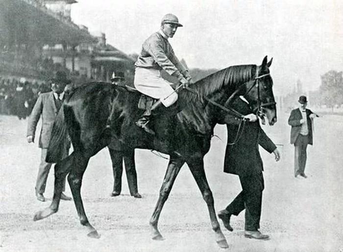 Список самых лучших лошадей мира: рекорды