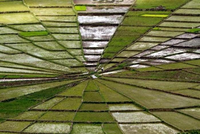 17 оптических иллюзий, которые заморочат голову и введут в замешательство