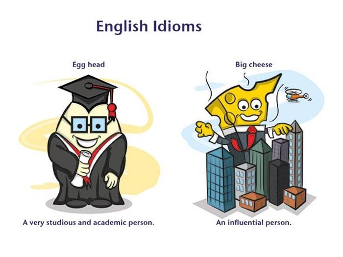 Что вы не знали об английских идиомах