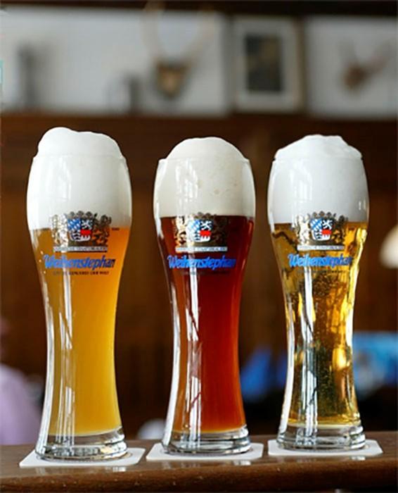 Вайнштефан: история самой старой пивоварни в мире