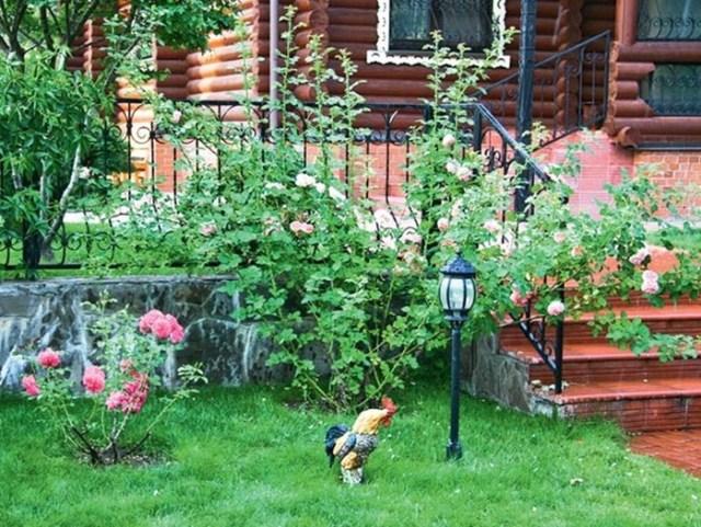 Садик приватного типа на собственном участке
