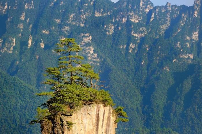 Леса Чжанцзяцзе: путешествие в национальный парк Китая