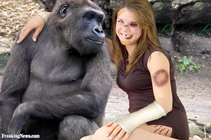 Woman having sex with ape porn