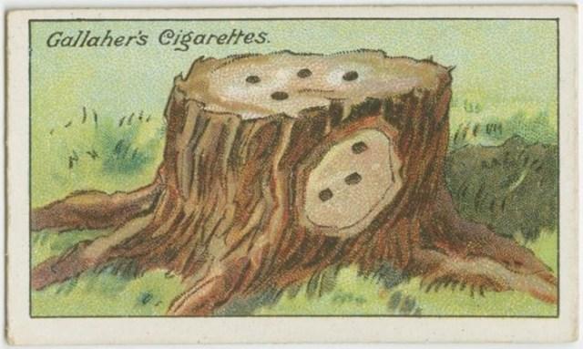 Этим гениальным лайфхакам уже сто лет!