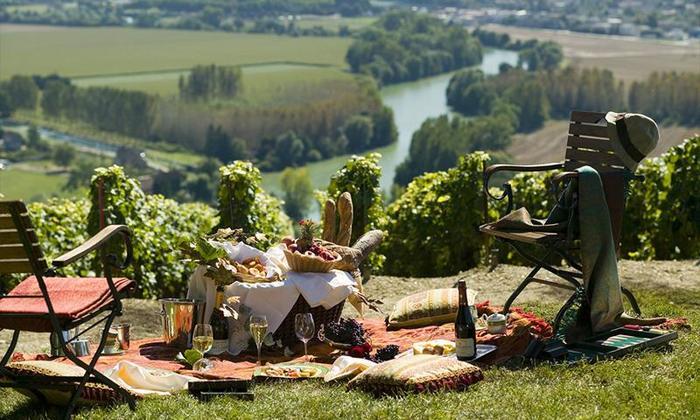 Интересные факты про вино