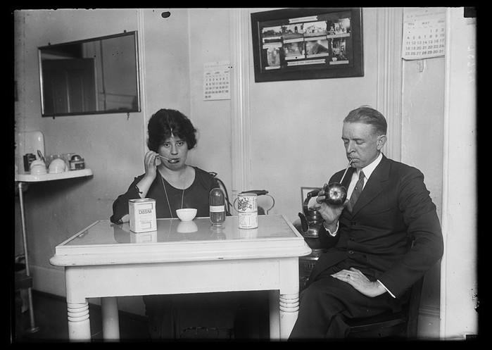 Падуб чайный: забытый напиток Северной Америки