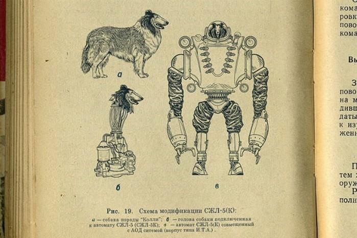 Советские биороботы: 5 секретных проектов Красной Армии
