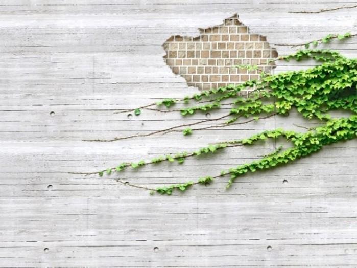 Как креативно закрыть дырку в стене