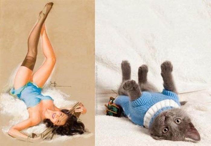 Забавный пинап. Девушки и коты Рэйчел Аспетт