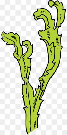 Mewarnai Gambar Rumput : mewarnai, gambar, rumput, Contoh, Gambar, Mewarnai, Rumput, KataUcap