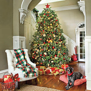 Simple Decorating Ideas For Christmas Trees With Colorful F