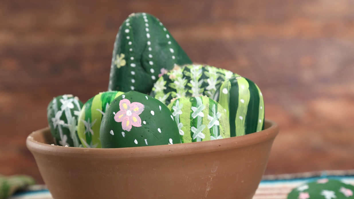 Painted Rock Cactus Garden Video Southern Living