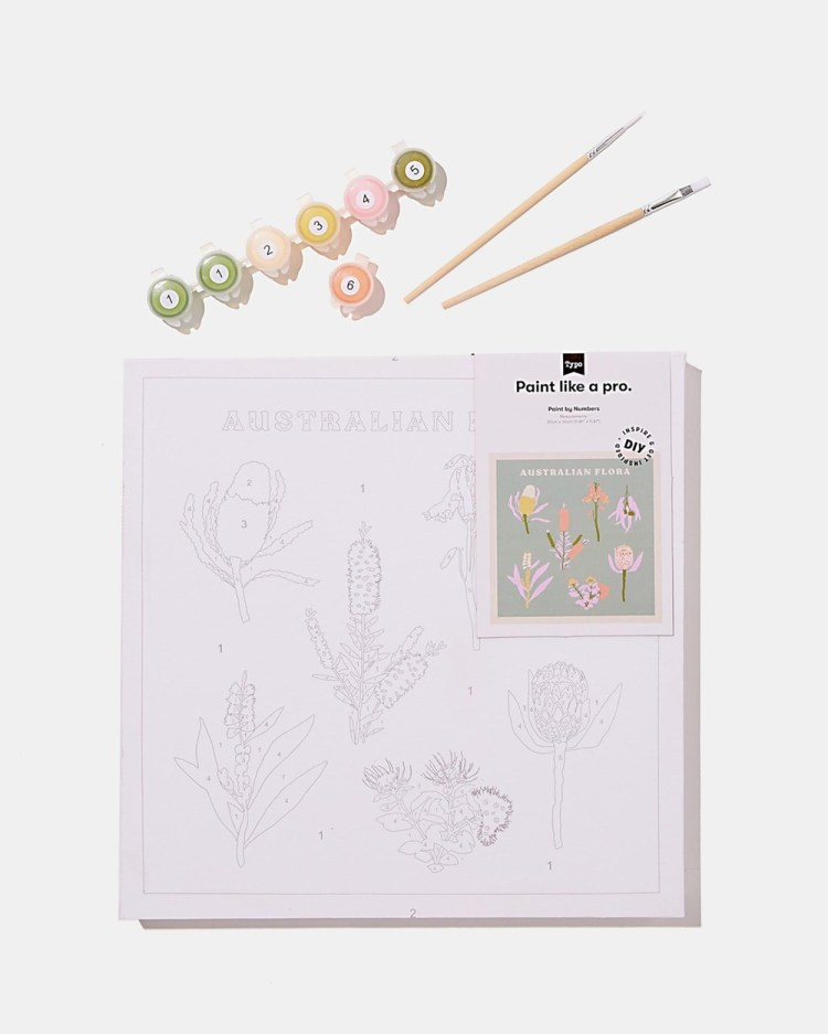 Typo Stretch Canvas Paint by Numbers 30 x Accessories Australian Flora