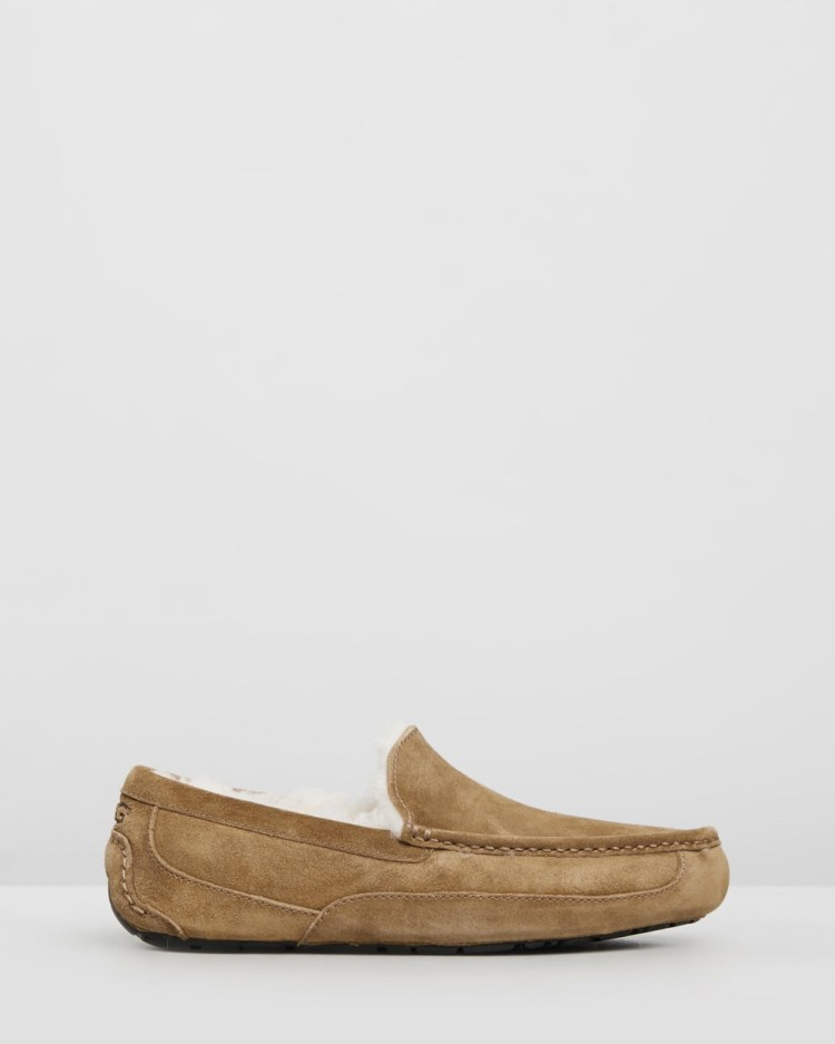 UGG Mens Ascot Slippers Accessories Chestnut