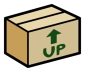 Karton Box Pin