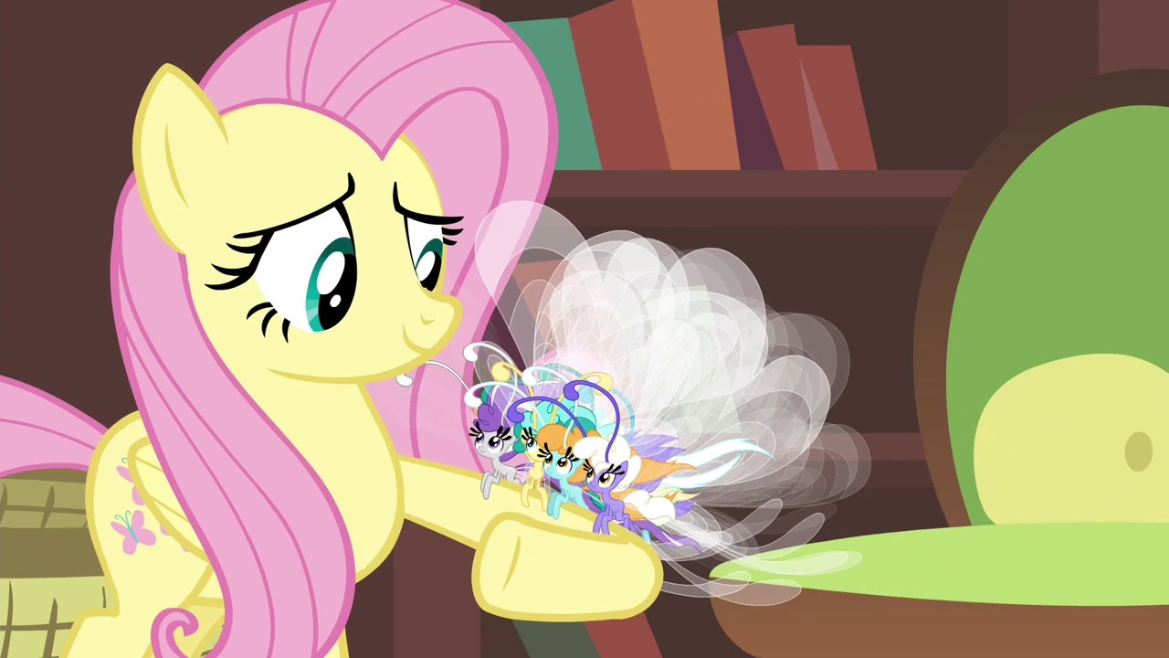 What My Little Pony Has Taught Me About Gender Identity ...