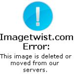Las Ovejas Negras – Subterraneo (2010)