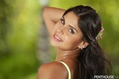 Penthouse – Katya Rodriguez – Soft And Chartreuse