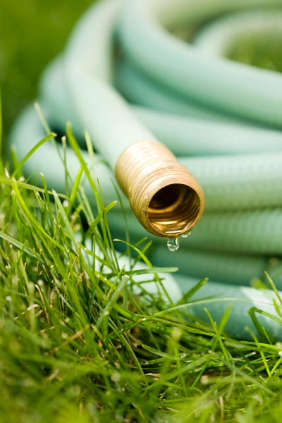 garden hose dripping and wound up in grass, fall easy upgrades for upkeep