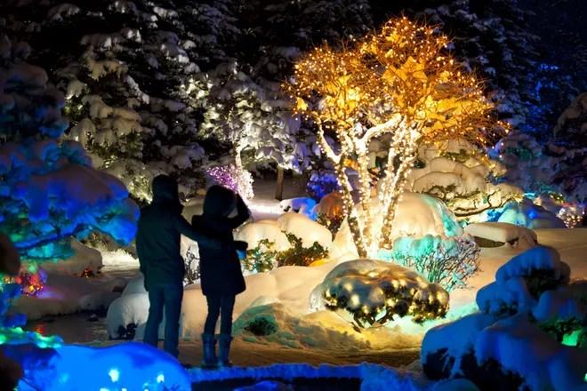 Mega Cavern Christmas Lights