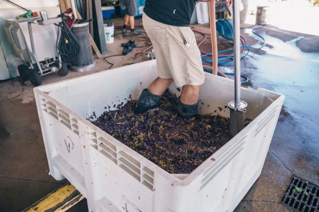 A good, old-fashioned stomping recipe is still made of selected grapes at Villa Creek in Paso Robles