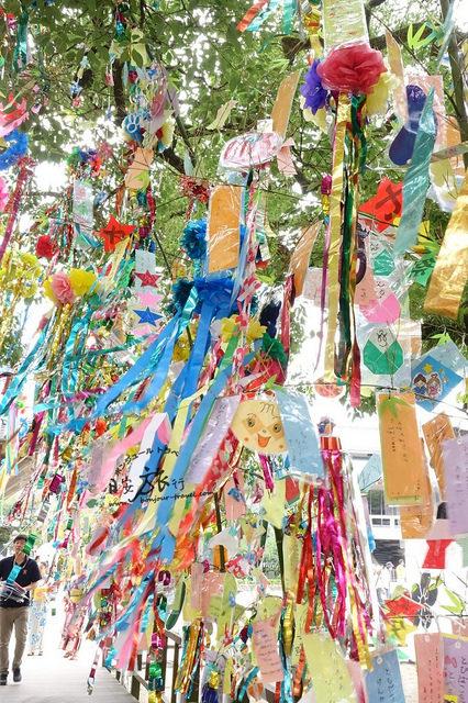 在七夕這天,日本人會把自己的心願寫在「短冊(たんざく)」上