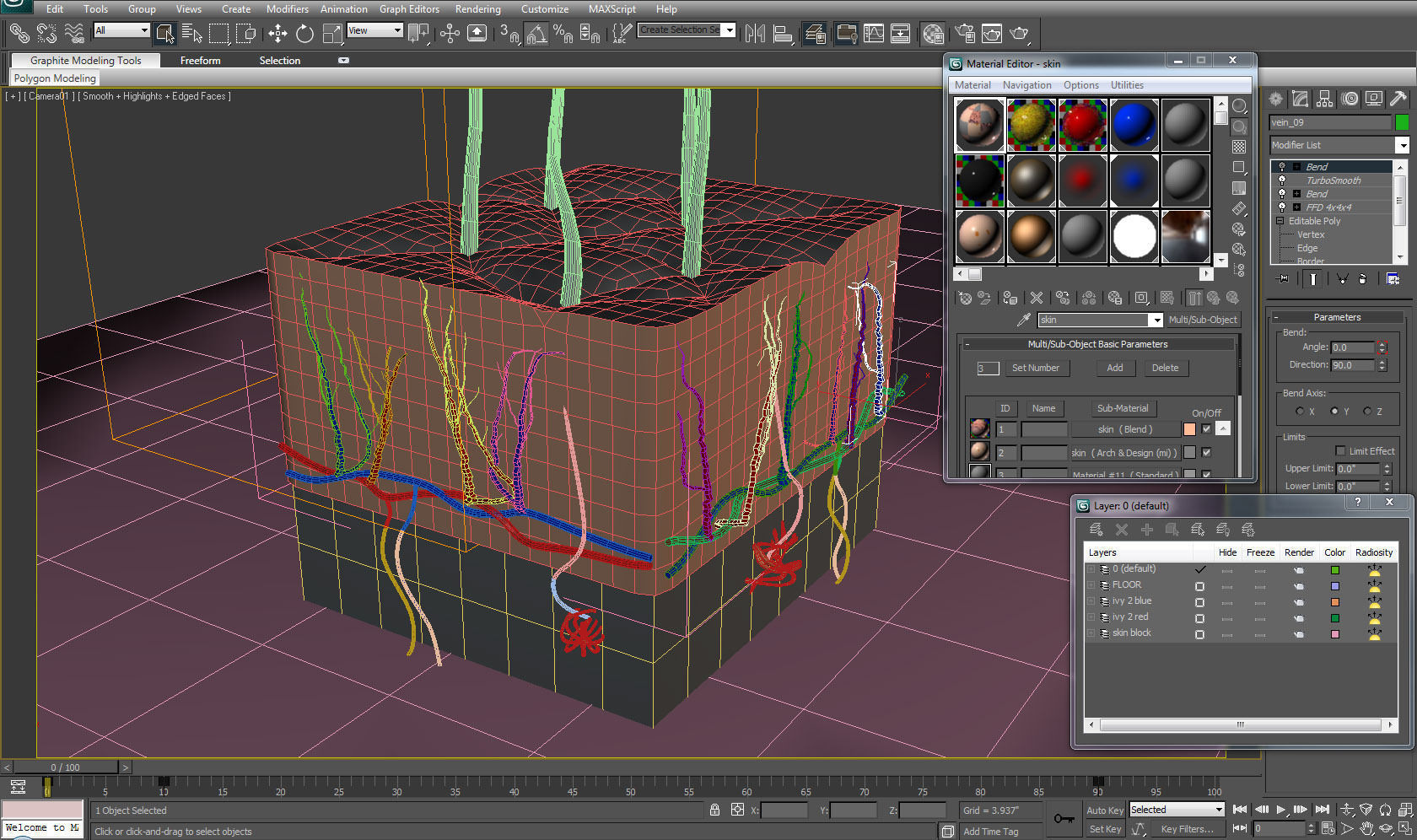 Skin Cross Section 3d Model Animated Rigged Max