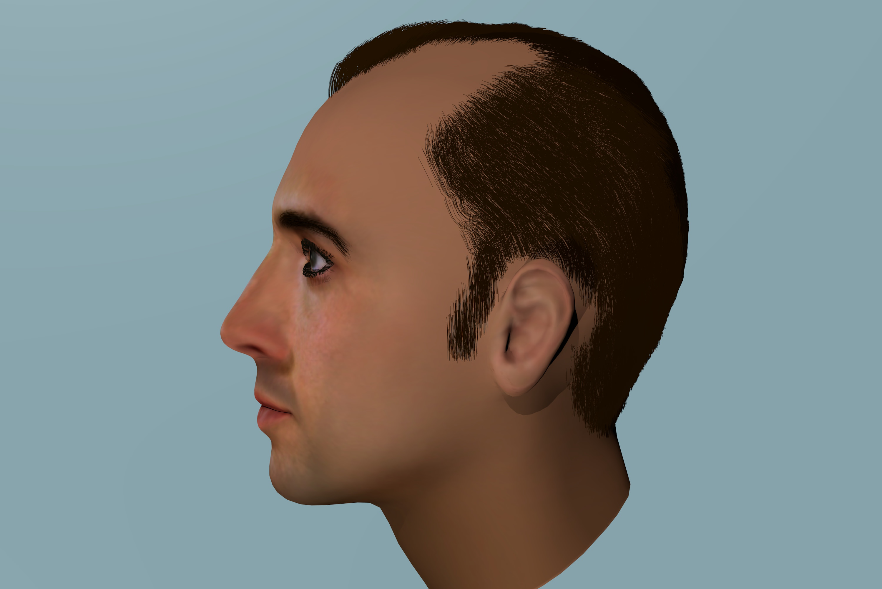 3D Model Of Nicolas Cage With Hair 3D Model BLEND