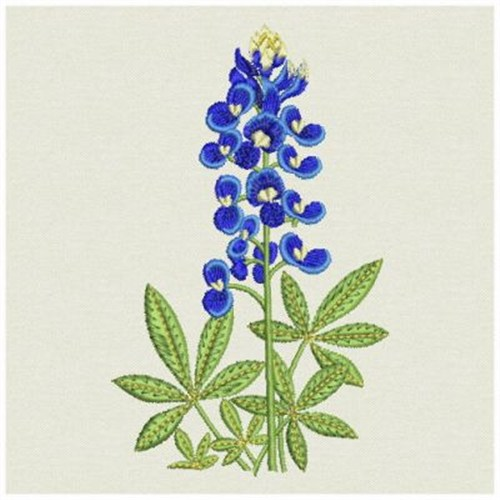 ace points embroidery design bluebonnet 3 66 inches h x 2 25 inches w