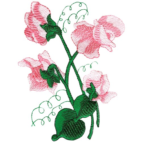 sweet pea embroidery # 1