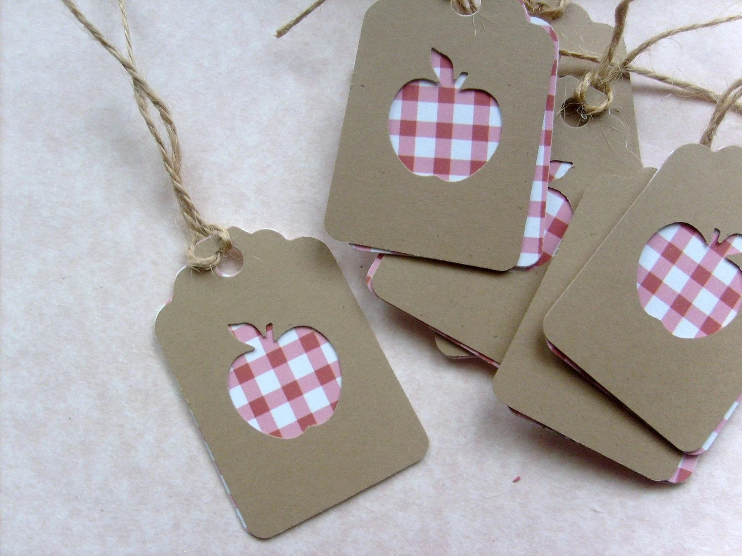 Tags for Teacher... Red Checkered Apples and Kraft paper Small Gift tags... Set of 15