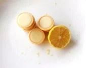 White Chocolate Lemon Truffle Tarts - Mini Citrus Fudge Tartlet Candy - two dozen - BakeAllTheThings