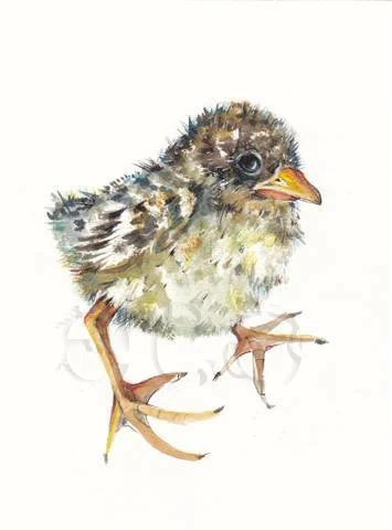 Baby Sparrow ORIGINAL mixed media painting