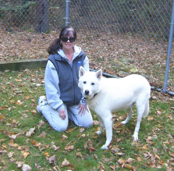 For Artists Exposed Custom Animal Telepathic Communication ANIMAL CHARITY DONATION