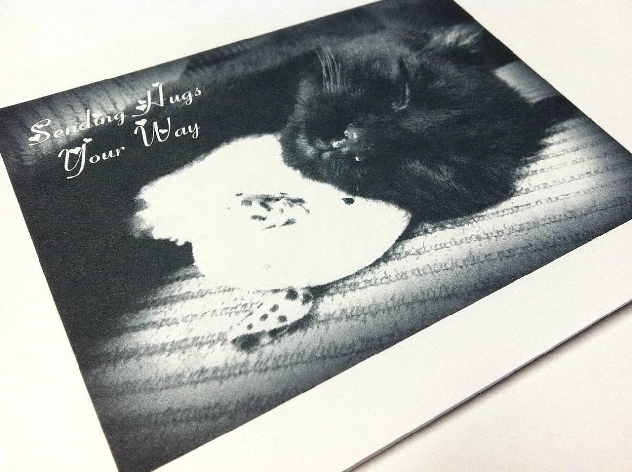 Flat Notecard Set of 5 Black Cat Love Black and White Matte Photo Card