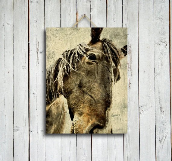Xerxes - Horse decor - Brown horse - Horse photo - Horse photography - native american style - western decor - brown decor