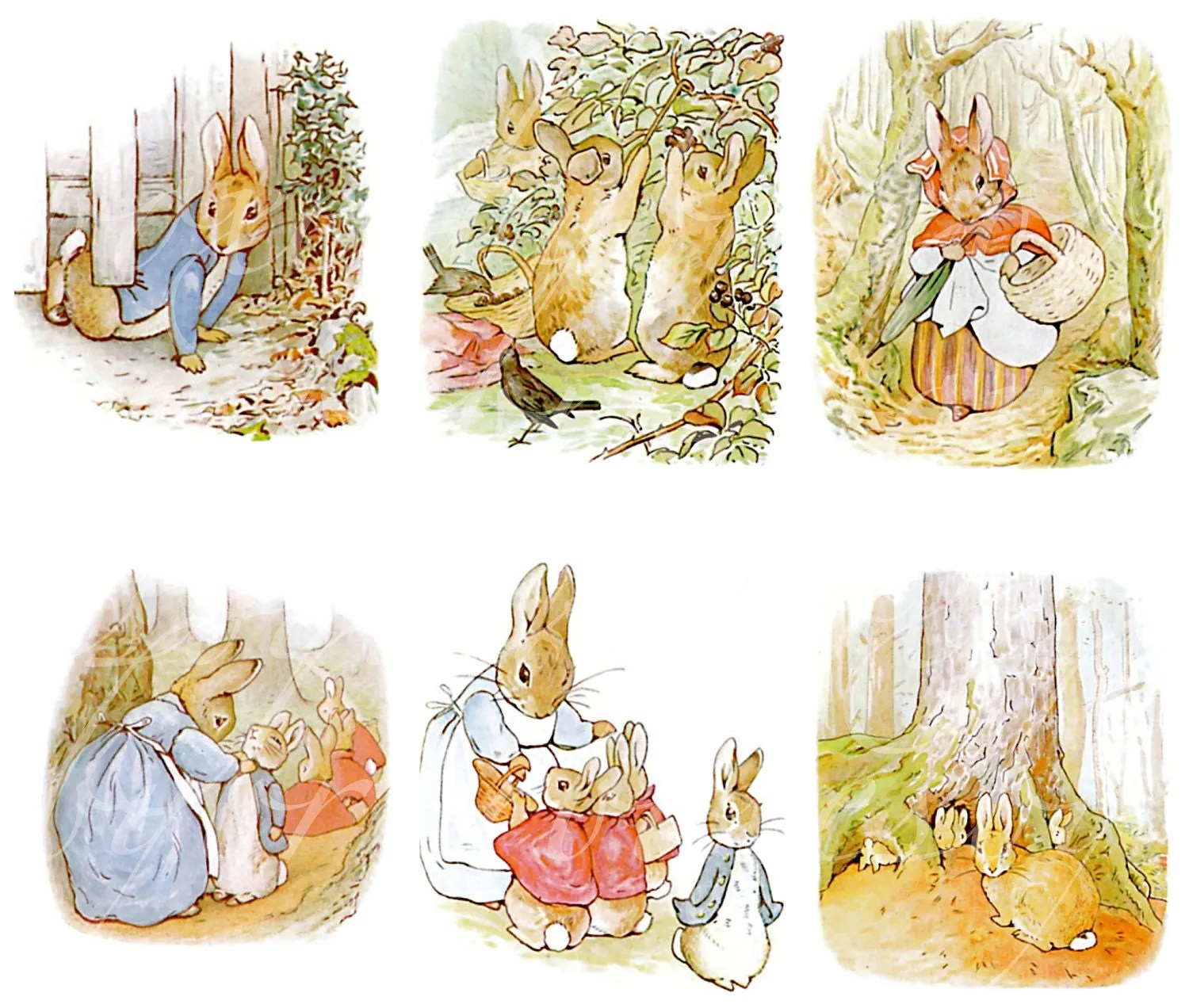 Instant Download Of 24 Peter Rabbit Images From Tale Of