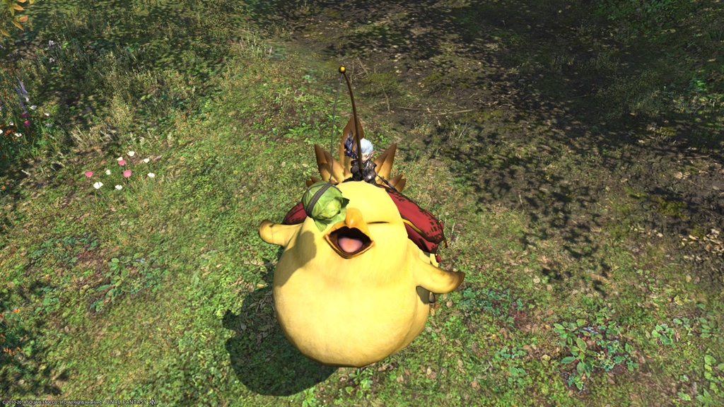 Deetoboto Lvarr Blog Entry Fat Chocobo FINAL FANTASY XIV The Lodestone