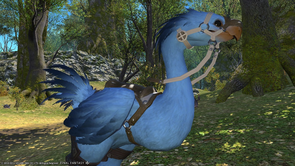 Chocobo Color Screenshots No How Tos Please Only Screenshots Page 5