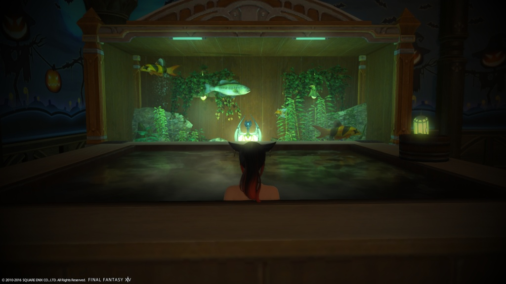 Base De Donnes Dorza Aquarium De Trs Grande Taille FINAL FANTASY XIV The Lodestone