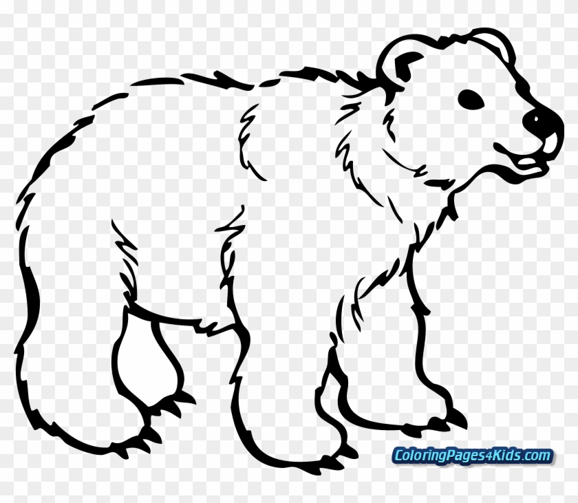 Brown Bear Coloring Pages Png Free Brown Bear Coloring Pages Png Transparent Images 95844 Pngio