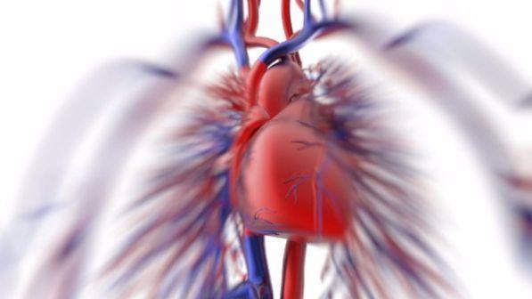 Calvizie e capelli grigi, tra i maschi Under 40 il segnale di un cuore a rischio