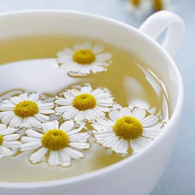 chamomile-tea