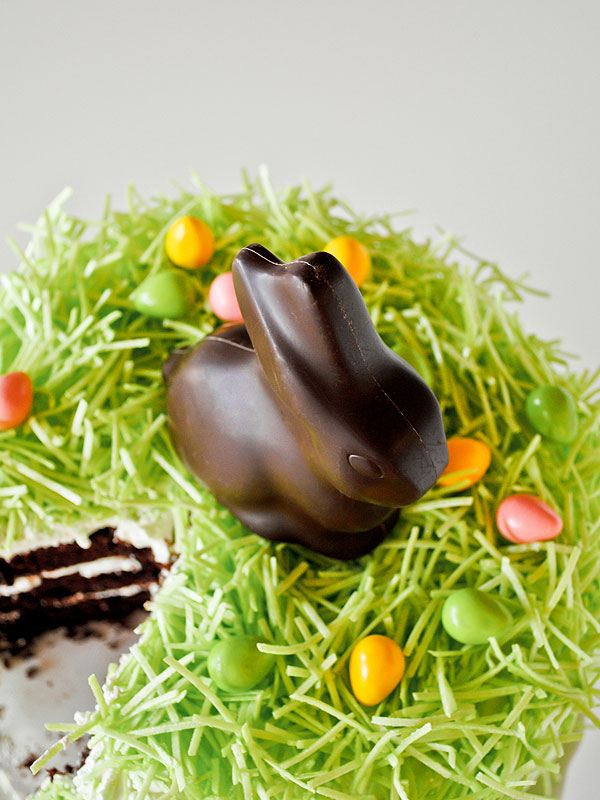 Chocolate Bunny Easter Cake Recipe