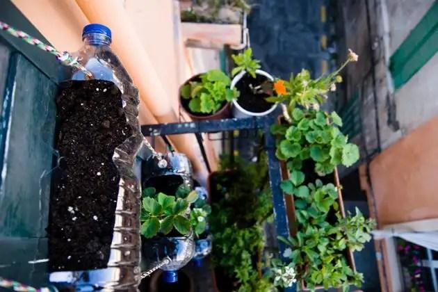 10966220 - Manual: Fabricar un Huerto Vertical en casa con botellas de plástico