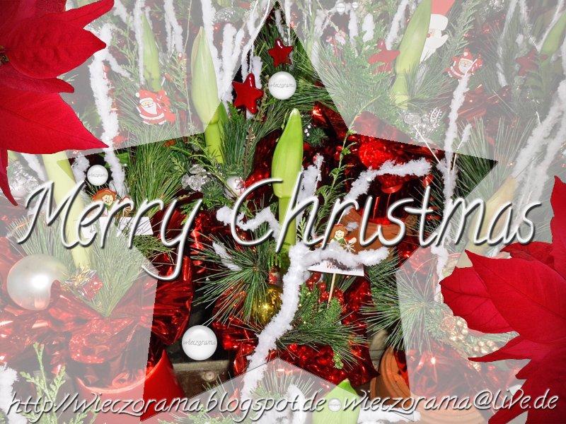 Das Bild zeigt eine Fotocollage aus Weihnachtsblumentoepfen dekoriert mit sternen Christstern Frame