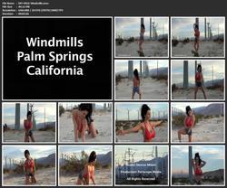 th 019293224 DM V022 Windmills.mov 123 544lo - Denise Milani - MegaPack 137 Videos