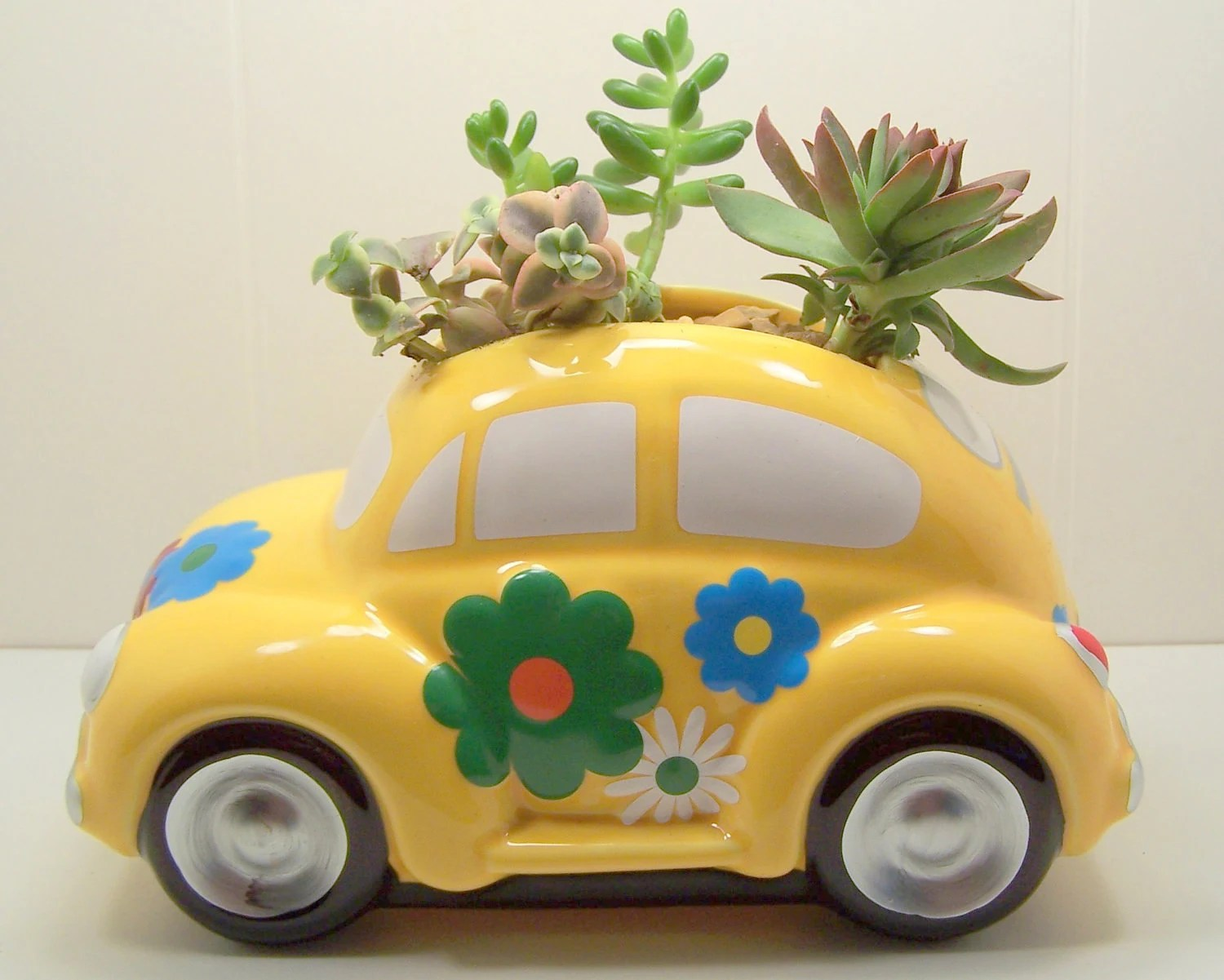 Succulent planter LOVE Bug DIY kit