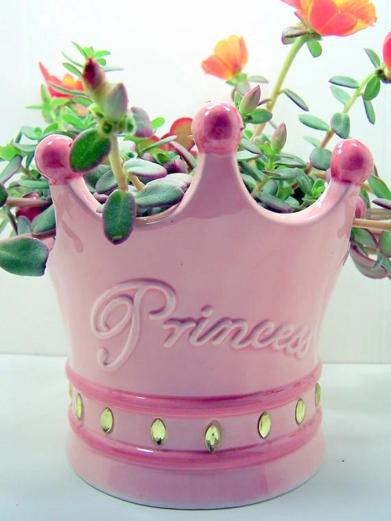 Succulent Princesa Planter DIY PINK TIARA