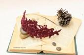 Wine Beaded Flower Lace Headband - lovelikestyle